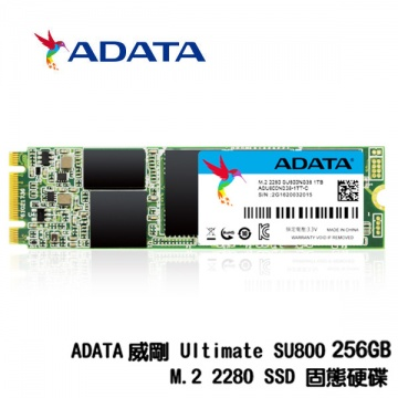 ADATA 威剛 Ultimate SU800 256G M.2 2280 SATA SSD 固態硬...